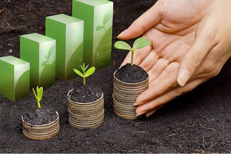Incentivos Financieros Foretales